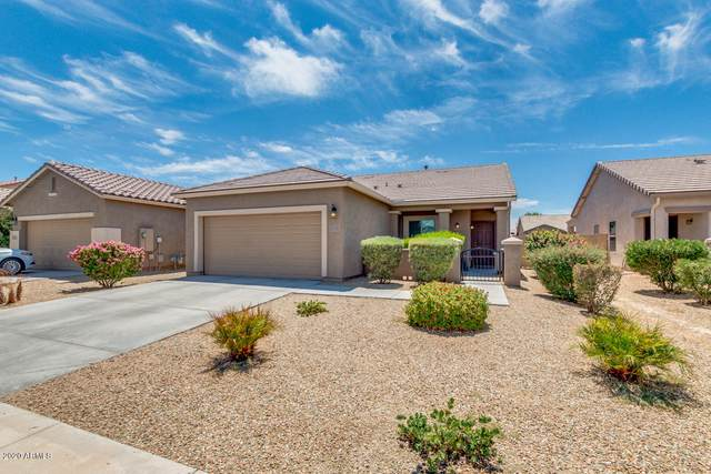 19155 W Monroe Street, Buckeye, AZ 85326 (MLS #6113522) :: Scott Gaertner Group