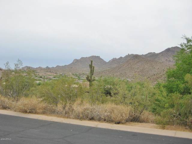 11433 E Chama Road, Scottsdale, AZ 85255 (MLS #6113533) :: Dijkstra & Co.