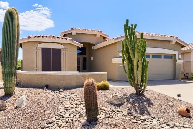 8241 E Masters Road, Gold Canyon, AZ 85118 (MLS #6113540) :: Klaus Team Real Estate Solutions