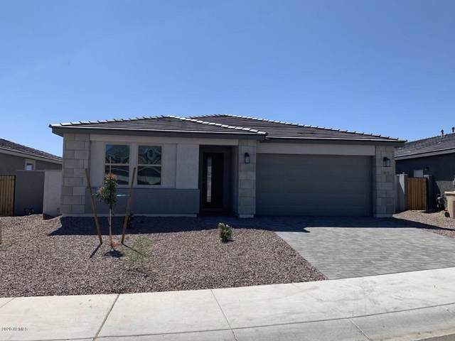 28878 N 132ND Lane, Peoria, AZ 85383 (MLS #6113554) :: The Helping Hands Team