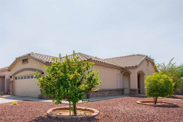 1010 S 5TH Avenue, Avondale, AZ 85323 (MLS #6113631) :: Klaus Team Real Estate Solutions