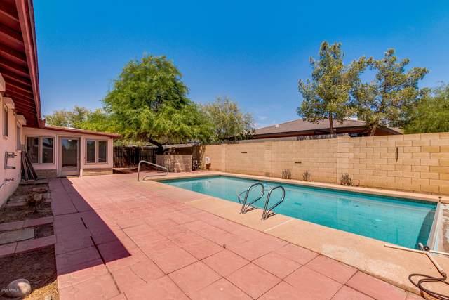 1736 E El Parque Drive, Tempe, AZ 85282 (MLS #6113633) :: My Home Group