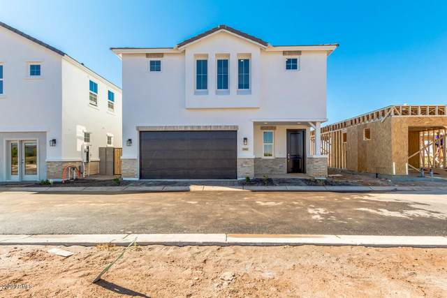 5516 S Dillon Circle, Mesa, AZ 85212 (MLS #6113651) :: Balboa Realty
