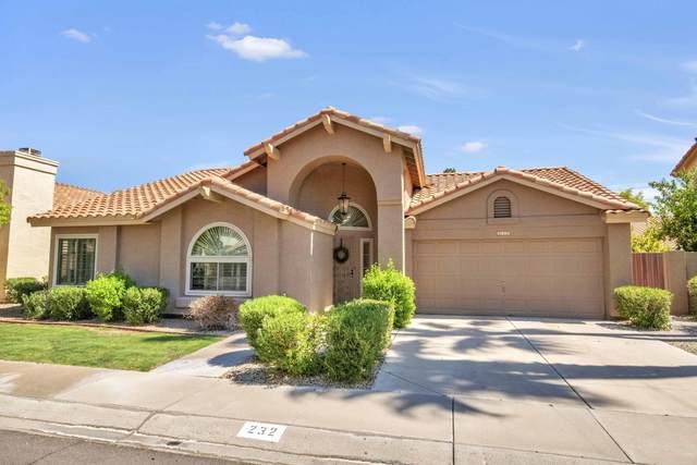 232 W Courtney Lane, Tempe, AZ 85284 (MLS #6113653) :: My Home Group