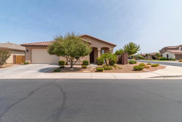 1060 W Redwood Avenue, San Tan Valley, AZ 85140 (MLS #6113656) :: Openshaw Real Estate Group in partnership with The Jesse Herfel Real Estate Group