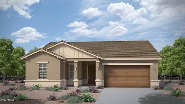 21033 E Calle Luna Court, Queen Creek, AZ 85142 (MLS #6113743) :: Klaus Team Real Estate Solutions