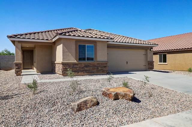 558 W Black Hawk Place, Casa Grande, AZ 85122 (MLS #6113788) :: Brett Tanner Home Selling Team