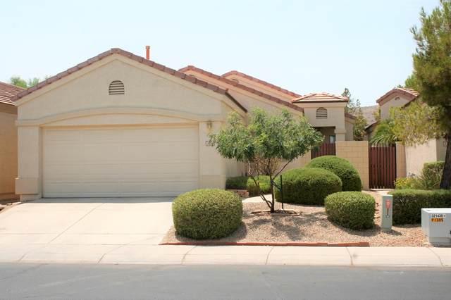 3219 E Fremont Road, Phoenix, AZ 85042 (MLS #6113789) :: Klaus Team Real Estate Solutions