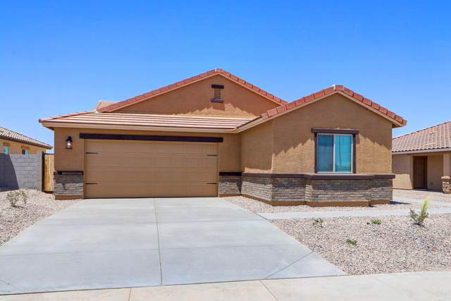 573 W Black Hawk Place, Casa Grande, AZ 85122 (MLS #6113812) :: Brett Tanner Home Selling Team