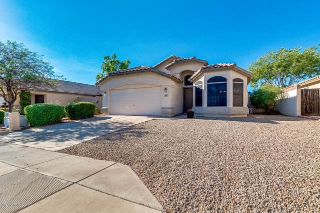 9862 E Onza Avenue, Mesa, AZ 85212 (MLS #6113893) :: Openshaw Real Estate Group in partnership with The Jesse Herfel Real Estate Group