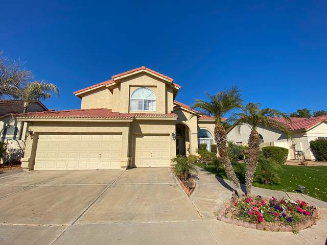 11114 W Olive Drive, Avondale, AZ 85392 (MLS #6113908) :: Long Realty West Valley