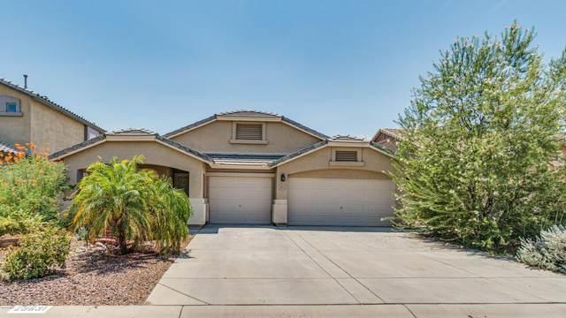 29631 N Balmoral Place N, San Tan Valley, AZ 85143 (MLS #6113915) :: BIG Helper Realty Group at EXP Realty