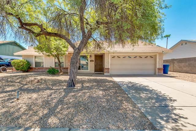 1815 N Arrowhead Circle, Chandler, AZ 85224 (MLS #6113945) :: My Home Group
