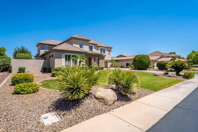 870 E Desert Inn Drive, Chandler, AZ 85249 (MLS #6113964) :: My Home Group