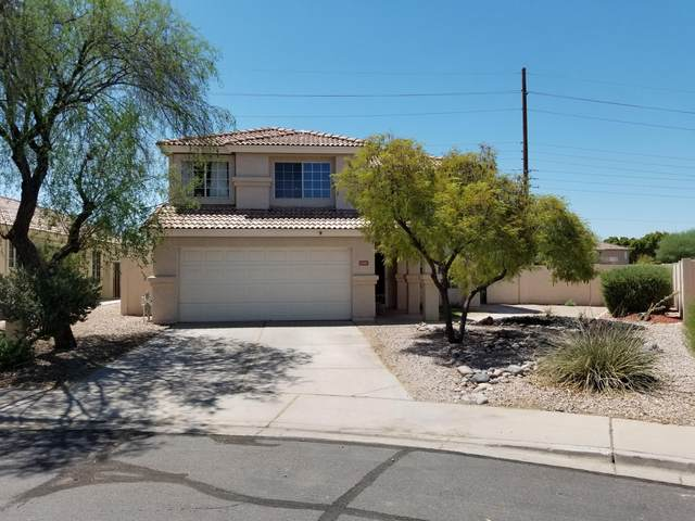 6047 E Sierra Morena Street, Mesa, AZ 85215 (MLS #6113979) :: My Home Group