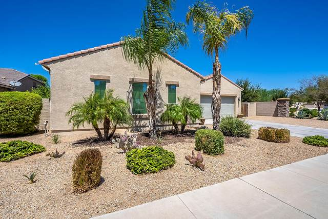 16144 W Berkeley Road, Goodyear, AZ 85395 (MLS #6113994) :: My Home Group