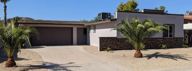 4137 E Shea Boulevard, Phoenix, AZ 85028 (MLS #6114001) :: My Home Group
