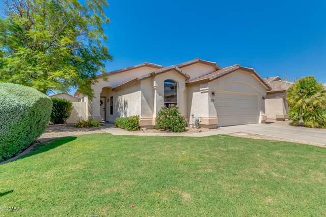 8146 E Portobello Avenue, Mesa, AZ 85212 (MLS #6114011) :: My Home Group