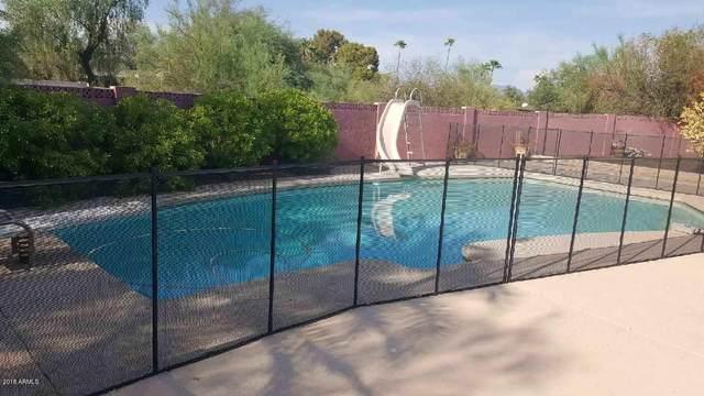 4840 E Fanfol Drive, Paradise Valley, AZ 85253 (MLS #6114021) :: Power Realty Group Model Home Center