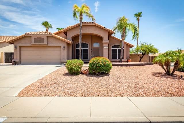 16419 N 12th Street, Phoenix, AZ 85022 (MLS #6114068) :: My Home Group