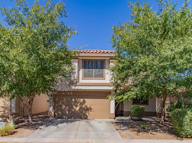 3342 S Conestoga Road, Apache Junction, AZ 85119 (MLS #6114076) :: Yost Realty Group at RE/MAX Casa Grande