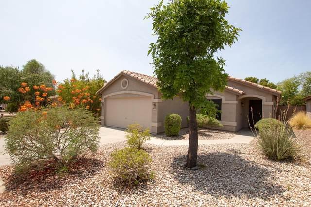 1140 N 89th Street, Mesa, AZ 85207 (MLS #6114077) :: Scott Gaertner Group