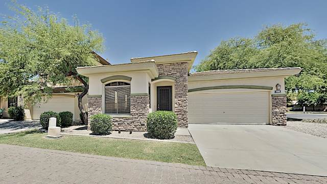 1996 W Olive Way, Chandler, AZ 85248 (MLS #6114129) :: Klaus Team Real Estate Solutions