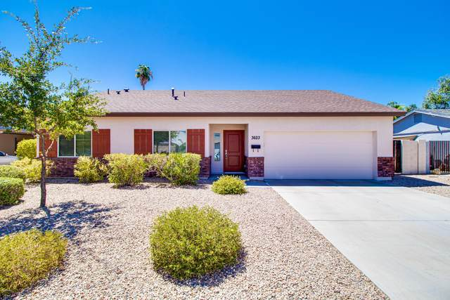 3623 E Crocus Drive, Phoenix, AZ 85032 (MLS #6114142) :: Budwig Team | Realty ONE Group