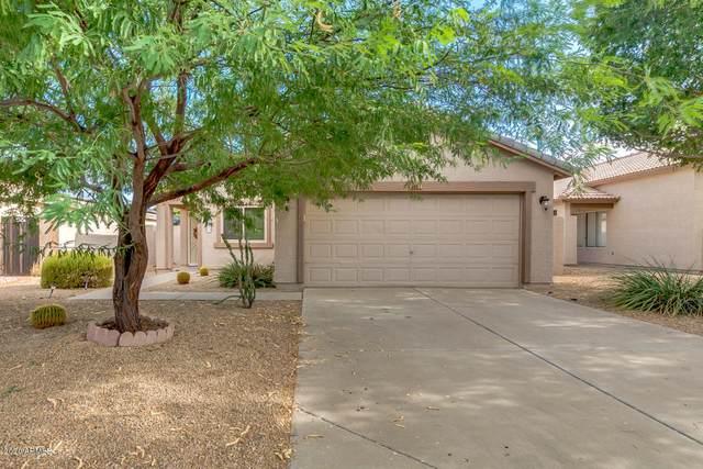 13535 W Saguaro Lane, Surprise, AZ 85374 (MLS #6114143) :: Klaus Team Real Estate Solutions