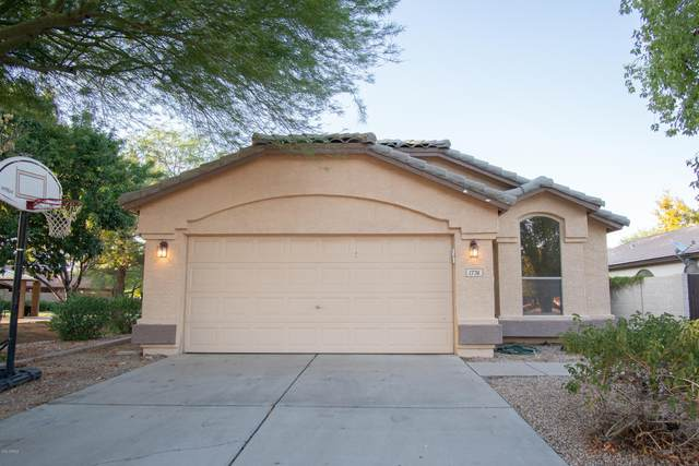 1776 E Pony Lane, Gilbert, AZ 85295 (MLS #6114146) :: The Everest Team at eXp Realty
