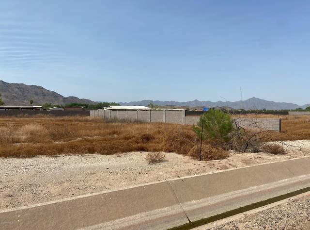 3045 W South Mountain Avenue, Laveen, AZ 85339 (MLS #6114219) :: Long Realty West Valley