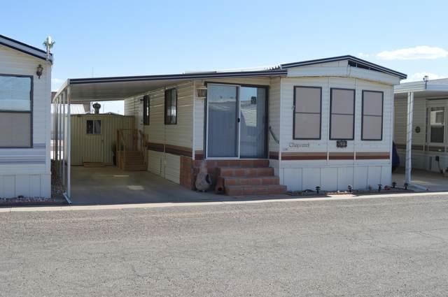 511 E Barrel Cactus Lane, Florence, AZ 85132 (MLS #6114291) :: Brett Tanner Home Selling Team