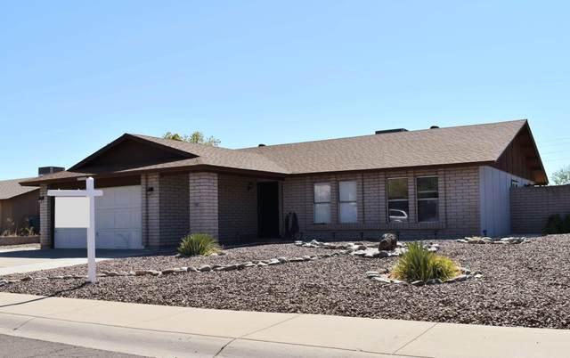 17826 N 50TH Avenue, Glendale, AZ 85308 (MLS #6114353) :: Klaus Team Real Estate Solutions
