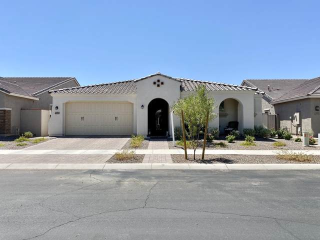 10727 E Sheffield Drive, Mesa, AZ 85212 (MLS #6114376) :: Klaus Team Real Estate Solutions