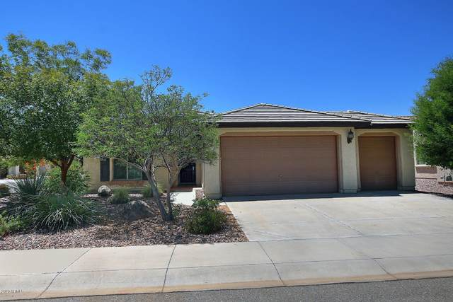 6385 W Stony Quail Way, Florence, AZ 85132 (MLS #6114403) :: Arizona Home Group