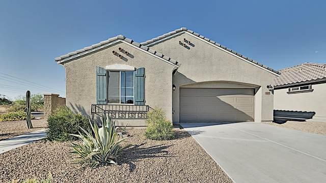 12025 W Hide Trail, Peoria, AZ 85383 (MLS #6114412) :: Keller Williams Realty Phoenix