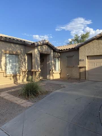 6391 S Roger Way, Chandler, AZ 85249 (MLS #6114420) :: Power Realty Group Model Home Center