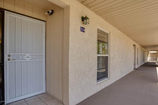 11036 N 28th Drive #214, Phoenix, AZ 85029 (MLS #6114435) :: Power Realty Group Model Home Center