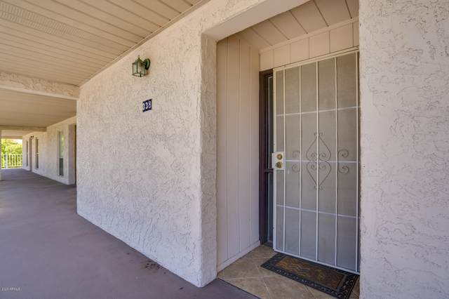 11044 N 28th Drive #338, Phoenix, AZ 85029 (MLS #6114462) :: Power Realty Group Model Home Center
