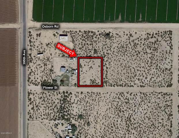 39408 W Flower Street, Tonopah, AZ 85354 (MLS #6114486) :: Klaus Team Real Estate Solutions