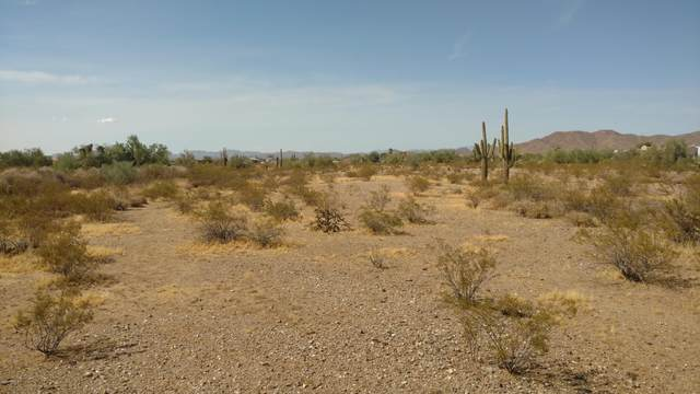 309XX N 164TH Drive, Surprise, AZ 85387 (MLS #6114528) :: Arizona Home Group
