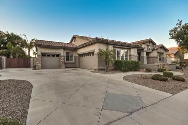 18768 E Caledonia Drive, Queen Creek, AZ 85142 (MLS #6114535) :: Power Realty Group Model Home Center