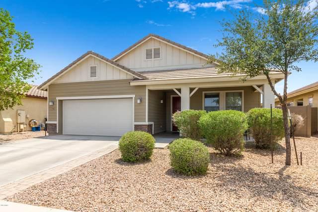 2389 E San Gabriel Trail, Casa Grande, AZ 85194 (MLS #6114536) :: Yost Realty Group at RE/MAX Casa Grande