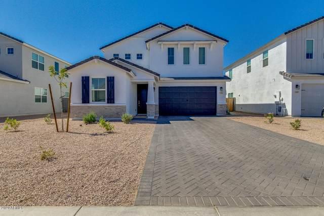 531 E Bamboo Lane, San Tan Valley, AZ 85140 (MLS #6114598) :: Maison DeBlanc Real Estate
