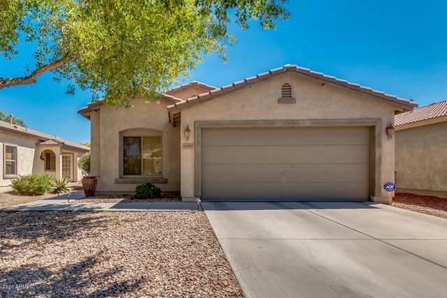 44967 W Bahia Drive, Maricopa, AZ 85139 (MLS #6114613) :: REMAX Professionals