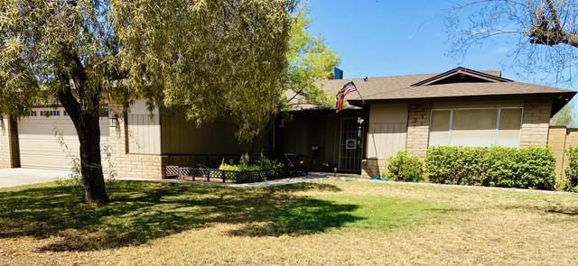 1131 E Avenida Fresca, Casa Grande, AZ 85122 (MLS #6114619) :: Klaus Team Real Estate Solutions