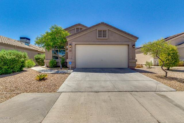 24000 N High Dunes Drive, Florence, AZ 85132 (MLS #6114626) :: Arizona Home Group