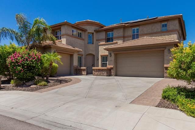5628 W Andrea Drive, Phoenix, AZ 85083 (MLS #6114641) :: Nate Martinez Team