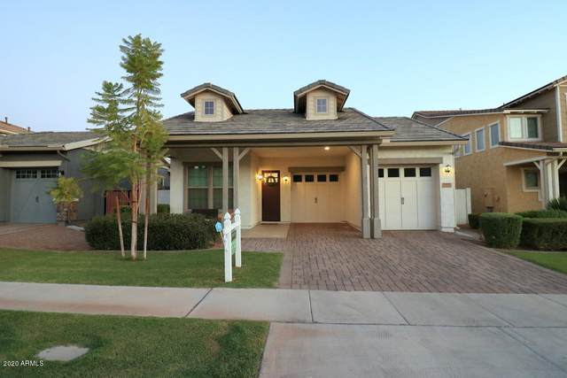 3133 E Sagebrush Street, Gilbert, AZ 85296 (MLS #6114696) :: The Property Partners at eXp Realty