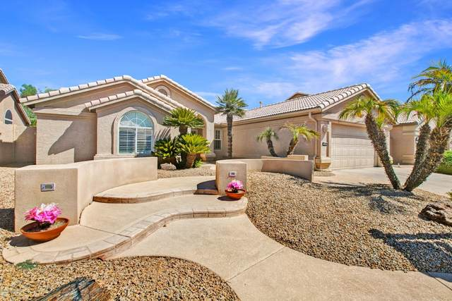 15664 W Piccadilly Road, Goodyear, AZ 85395 (MLS #6114721) :: The Bill and Cindy Flowers Team